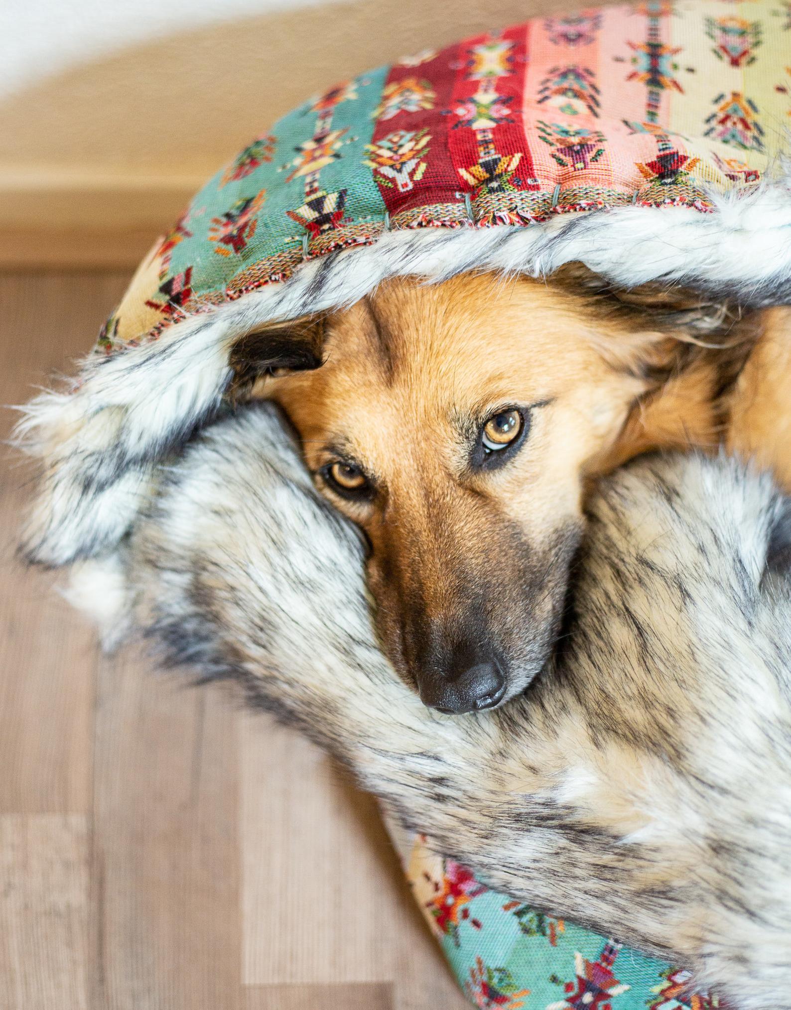 Hundesovepose I BOHEMESTIL som skaber tryghed for din hund