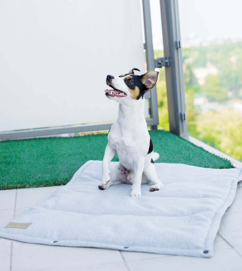 Hundetransportmåtte til rejsen i lysegrå fra hundeproducenten Bowl&Bone Republic
