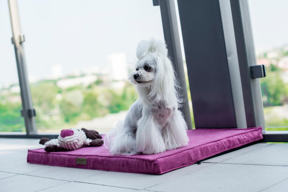 CHILL Hundemåtte i pink fra Bowl&Bone Republic