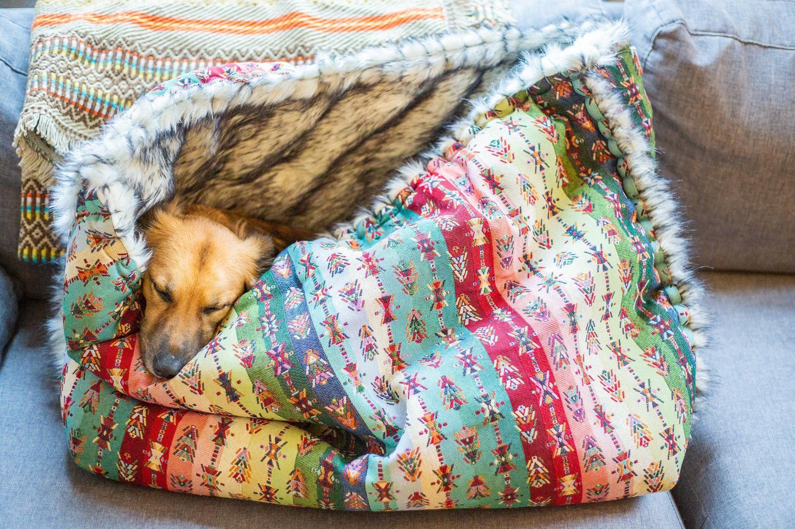 Hundesovepose i etnisk stof og pelsindtræk