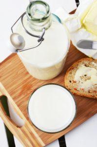 Kan din hund tåle mælk og mælkeprodukter? Få svaret i Kæledyrsbloggen